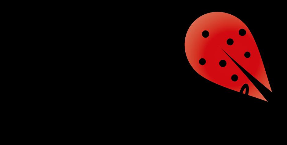 Dags för Ladybug